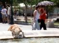 Καύσωνες και Ξηρασία για την ΑΘΗΝΑ | Τεράστια αύξηση σε καύσωνες και ξηρασίες στο μέλλον | Athens